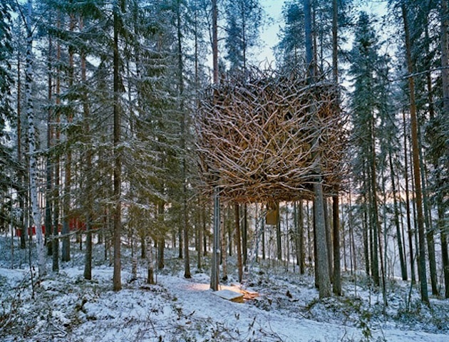 How to build a swedish treehouse the creators project for Eagle nest home designs