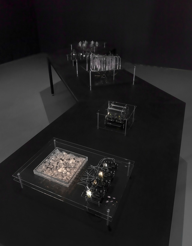 An Artist Has Made A Primitive Computer Out Of Earth Crystals, And ...
